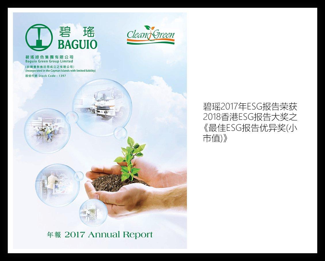 碧瑶绿色集团有限公司-2017年