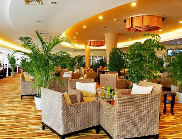 酒店植物租摆方案
