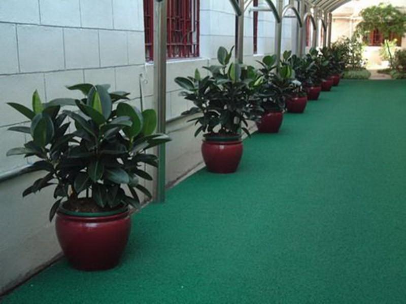 选择上海植物租赁公司有哪些好处