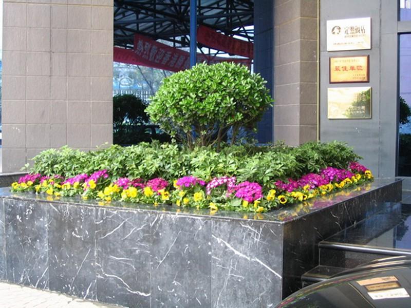 上海植物租赁公司花卉植物栽培的四大要素
