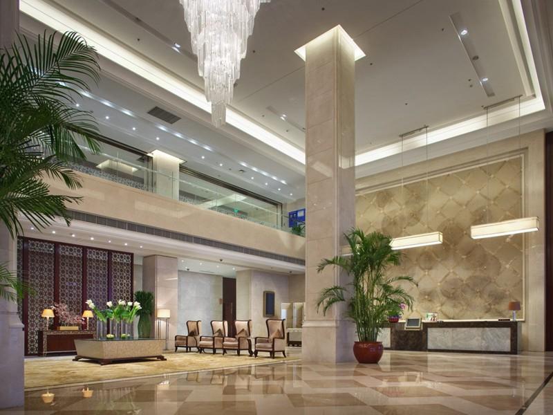 上海绿植租赁公司给大家来介绍两款改变***的植物