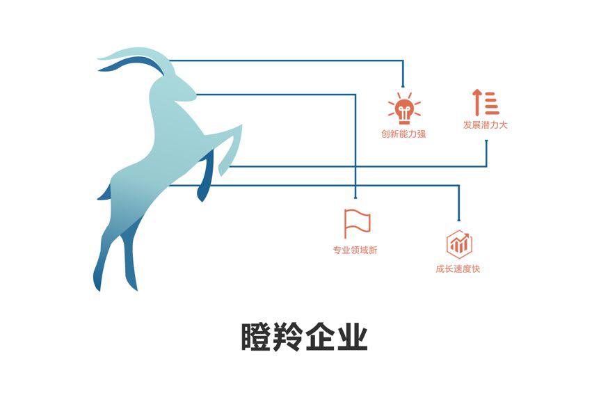 """2019年江西省""""瞪羚企业"""""""