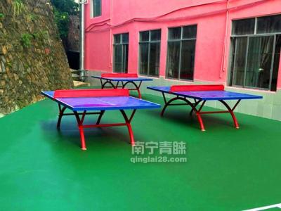 巴馬一小室外乒乓球桌