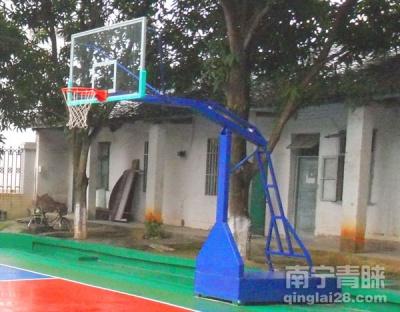 崇左黨校平箱式籃球架