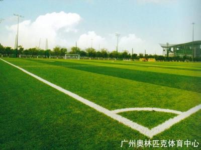 廣州奧林匹克體育中心
