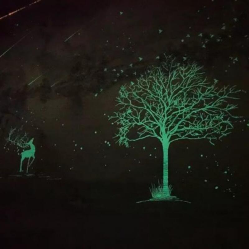 Glow in the dark wall paper