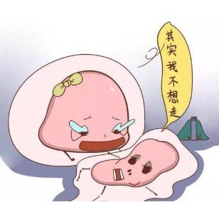 卵子质量差,难怀孕?你应该改善一下卵子质量啦!