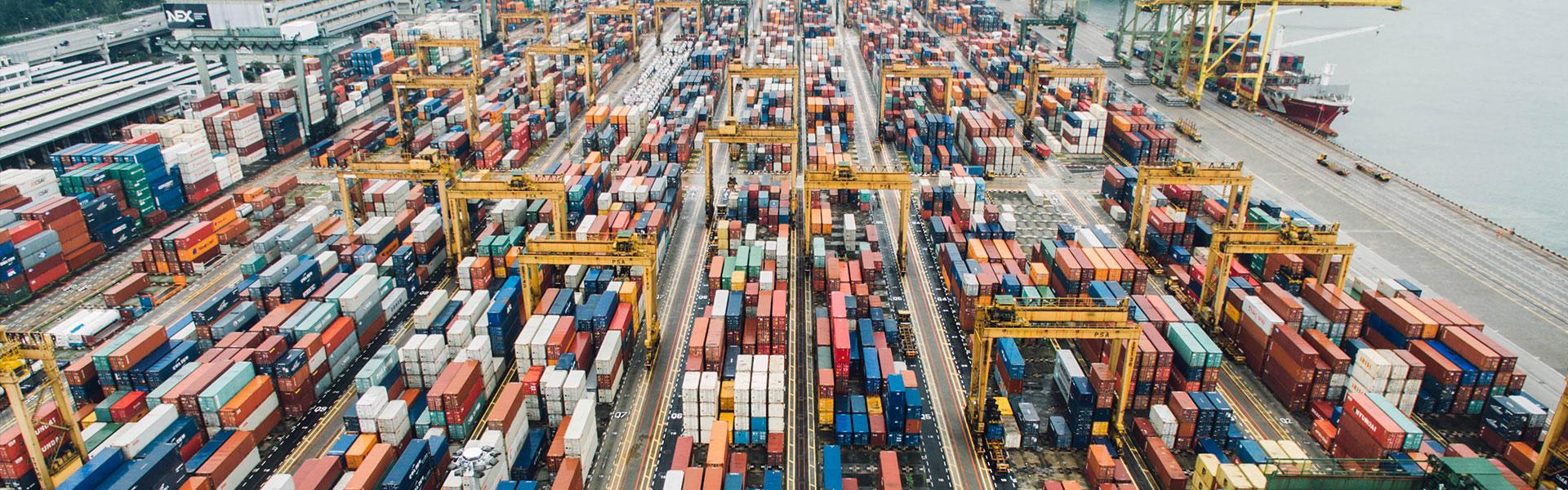 全球化与物流 嘉丰国际物流在引领时代
